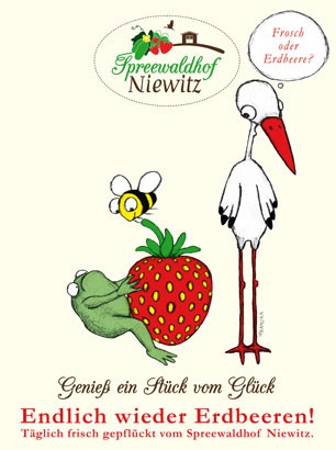 niewitz
